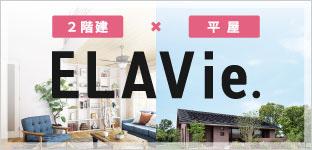 NEW TREND HIRAYA